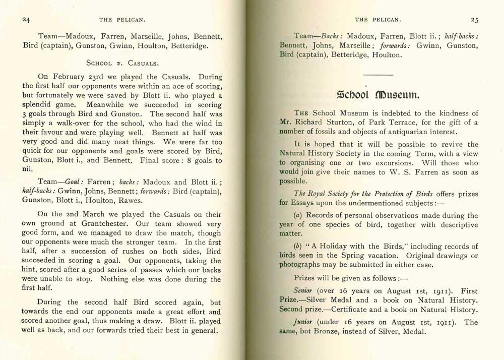 Pelican-19112.jpg